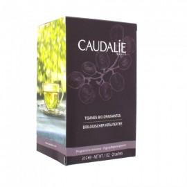 Caudalie Tisanes Bio Drainantes, Τσάι Αποτοξίνωσης 30gr (20 sach.)