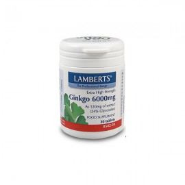 Lamberts Ginkgo Biloba Extract - Κυκλοφορία του Αίματος - Μνήμη  6000mg, 30 Tablets