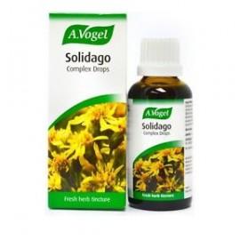 A.Vogel Solidago Complex Drops, Για Υγιές Ουροποιητικό 50ml
